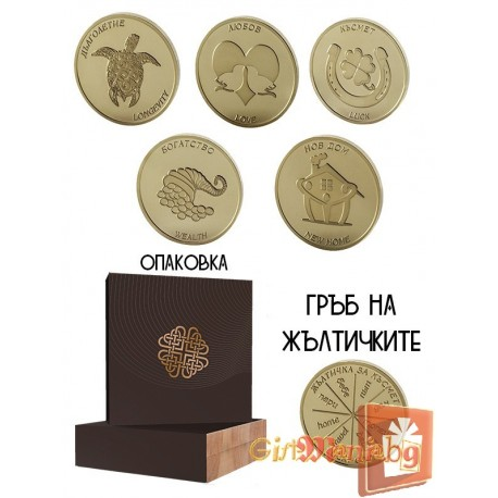 Collection 5 coins for Christmas