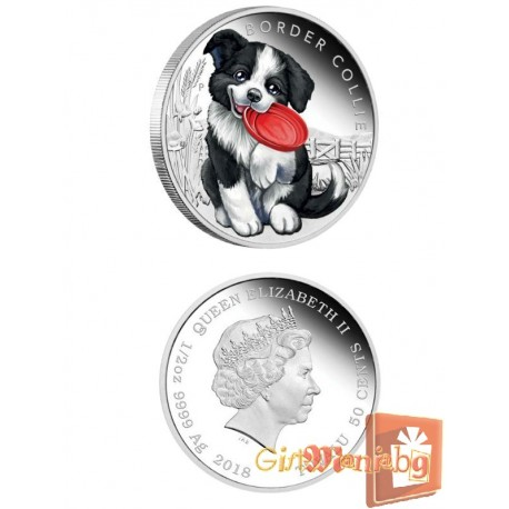 "Silver coin ""Puppies - Border Collie"""