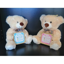 Teddy bear for newborn